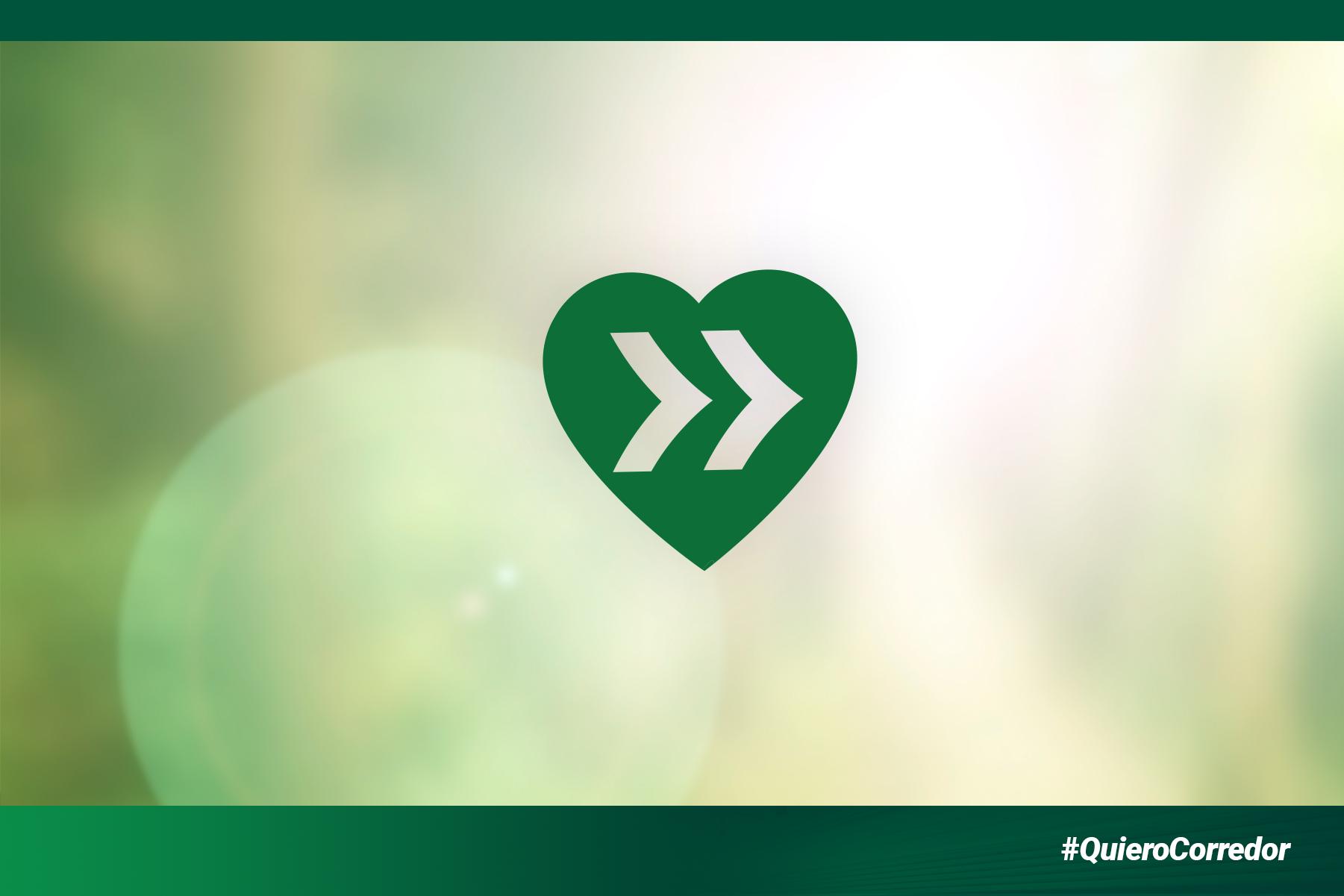 En el Día Mundial del Medio Ambiente: #QuieroCorredor
